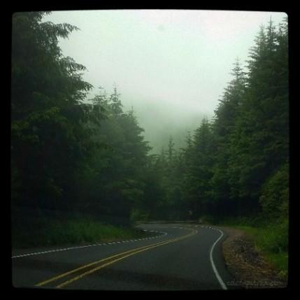 Northern California road