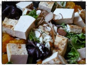 grilled tofu salad_opt
