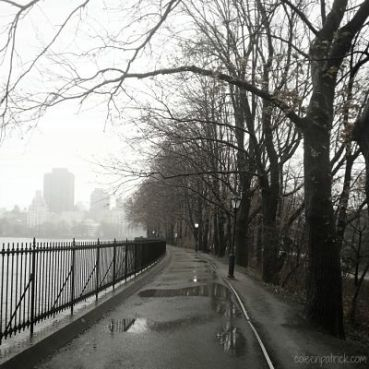 central park rainy day_opt