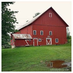 red barn Stowe Vermont_opt