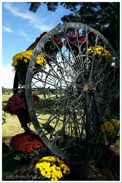 flower Ferris wheel_opt