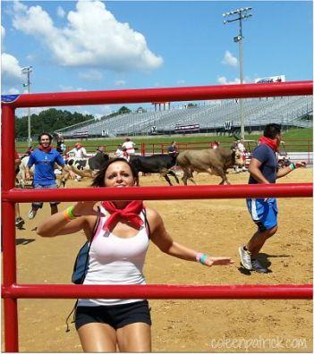the great bull run fear_opt
