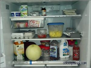 what's in your fridge coleen patrick 2_opt