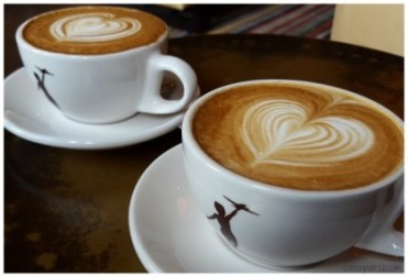 Storyville coffee Seattle