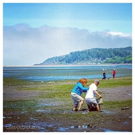 netarts bay oregon oysters