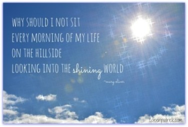 shining world quote travel